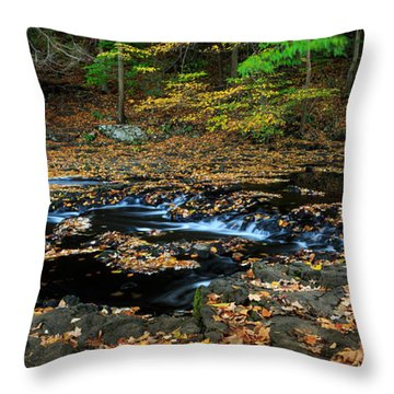 Silky New England Stream In Autum Throw Pillow