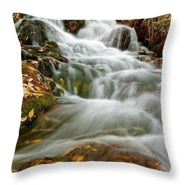 Silky Waterfall Throw Pillow