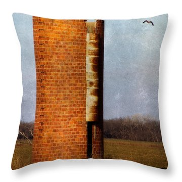 Silo Throw Pillow by Lana Trussell