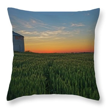 Silos At Sunset Throw Pillow