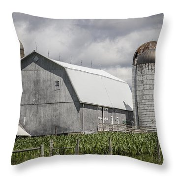 Silos Standing Throw Pillow