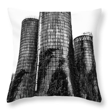 Throw Pillow featuring the photograph Silos by Tamera James