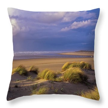 Siltcoos River Mouth Throw Pillow