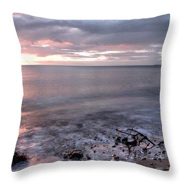 Silver Beach Throw Pillow by Svetlana Sewell