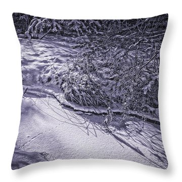 Silver Brook In Winter Throw Pillow