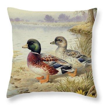 Silver Call Ducks Throw Pillow