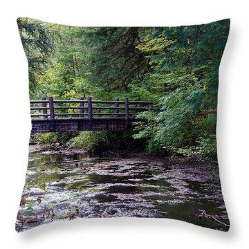 Silver Creek Falls #38 Throw Pillow