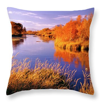 Silver Creek Fly Fishing Only Throw Pillow