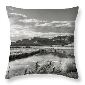 Silver Creek Throw Pillow