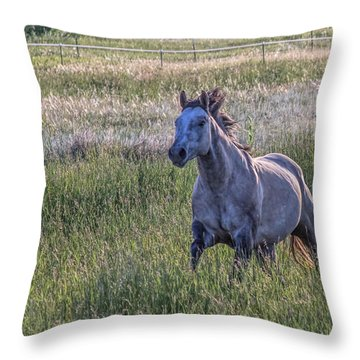 Silver Dun Throw Pillow by Alana Thrower