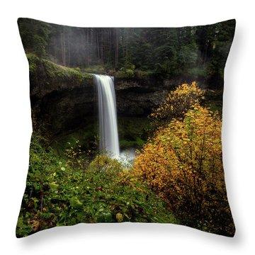 Silver Falls Throw Pillow