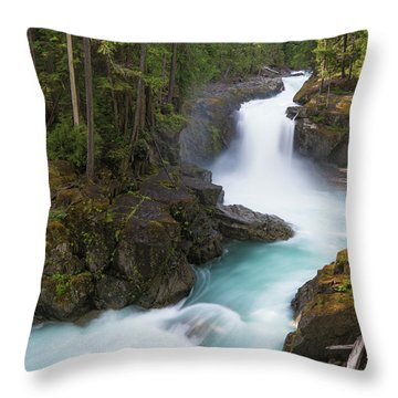 Silver Falls Washington Throw Pillow