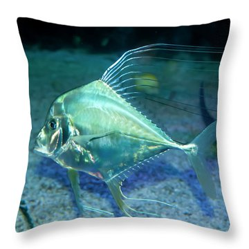 Silver Fish Throw Pillow by Svetlana Sewell