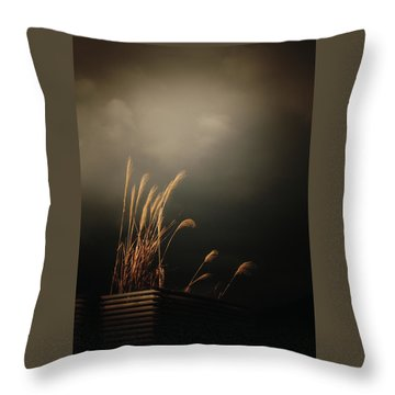 Silver Grass Throw Pillow by Rachel Mirror