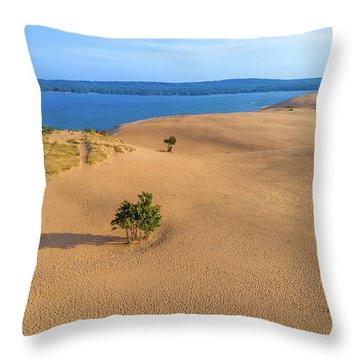 Silver Lake Dunes Throw Pillow