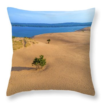 Silver Lake Dunes Throw Pillow