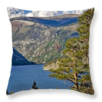 Silver Lake Pines Throw Pillow by Chris Brannen