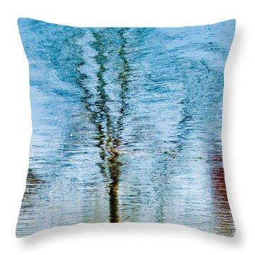 Silver Lake Tree Reflection Throw Pillow