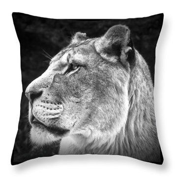 Silver Lioness - Squareformat Throw Pillow