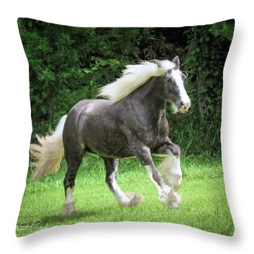 Silver Reign Just Dazzling Throw Pillow