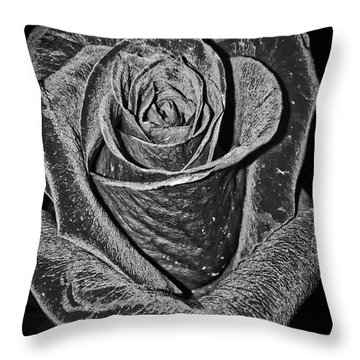 Silver Rose Throw Pillow