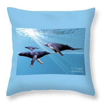 Silver Sea Throw Pillow by Corey Ford