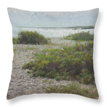 Silver Shoreline Westport Ma Throw Pillow