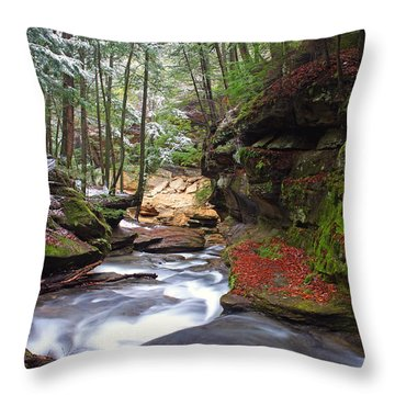 Silver Singing River Throw Pillow by Jaki Miller