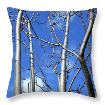 Silver Smooth Throw Pillow