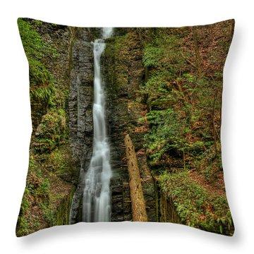 Silver Thread Throw Pillow by Evelina Kremsdorf