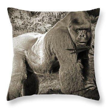 Silverback II Throw Pillow