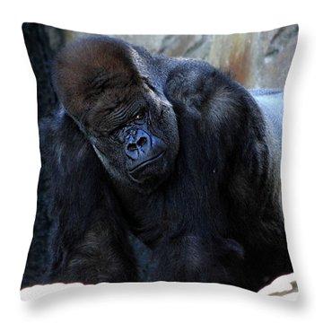 Silverback Kibabu Rules His Kingdom Throw Pillow