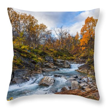 Throw Pillow featuring the photograph Silverfallet by James Billings