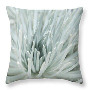Silversword Throw Pillow