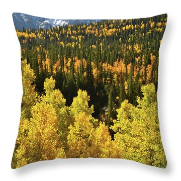 Throw Pillow featuring the photograph Silverton Mountainscape by Ray Mathis