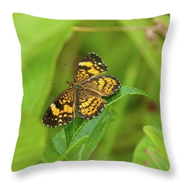 Throw Pillow featuring the photograph Silvery Checkerspot Butterfly by Lara Ellis