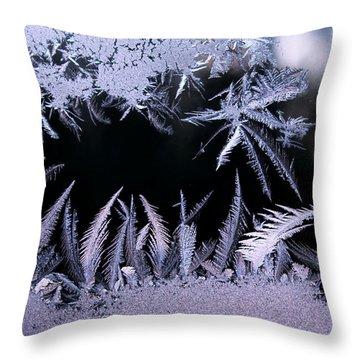 Silvery Window Fronds Throw Pillow by Liz Allyn