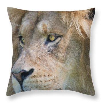 Simba 2 Throw Pillow