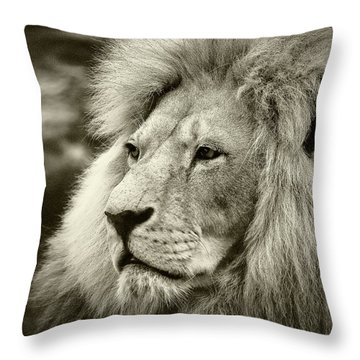 Throw Pillow featuring the photograph Simba by Stefan Nielsen