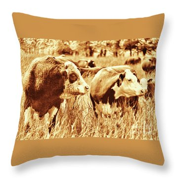Simmental Bull 3 Throw Pillow
