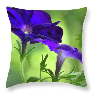 Simple And Undemanding Throw Pillow
