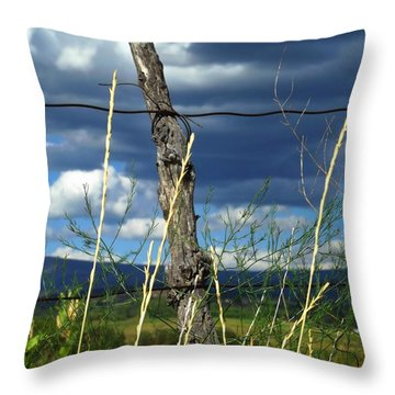 Simple Beauty Throw Pillow by Annie Gibbons