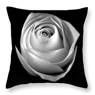 Simple Elegance Throw Pillow by Elsa Marie Santoro
