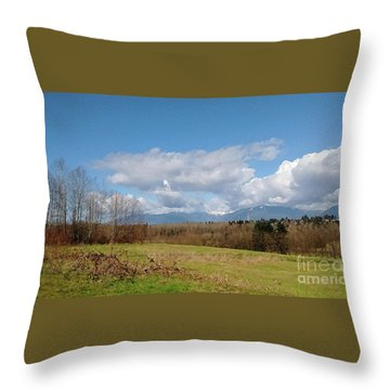 Throw Pillow featuring the photograph Simple Landscape by Bill Thomson