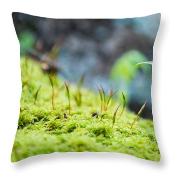 Throw Pillow featuring the photograph Simple Sprout by Rhys Arithson
