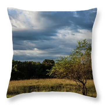 Throw Pillow featuring the photograph Simplicity by Iris Greenwell