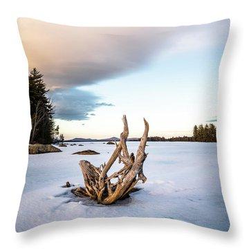 Simplicity No.4  Throw Pillow