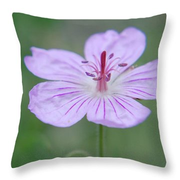 Simplicity Of A Flower Throw Pillow