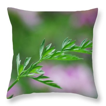 Throw Pillow featuring the photograph Simplicity by Ramona Whiteaker