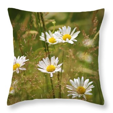 Simplicity Throw Pillow by Sheila Ping
